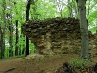 Mauerrest der Burg Jossa zwischen Alsbach und Jugenheim von Hans Günter König