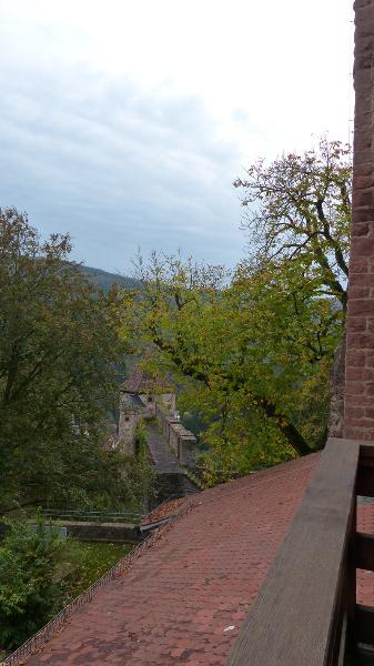 schloss-hirschhorn-13