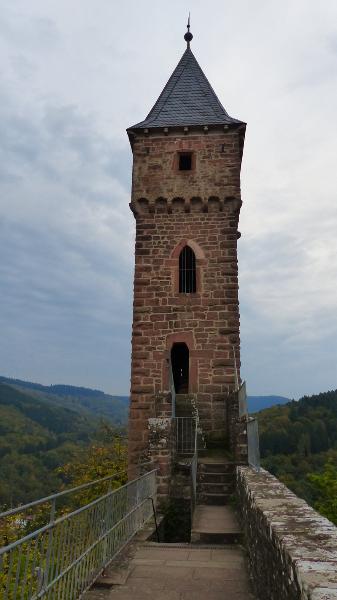 schloss-hirschhorn-20