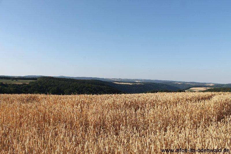 odenwaldblick-by-g-kropp